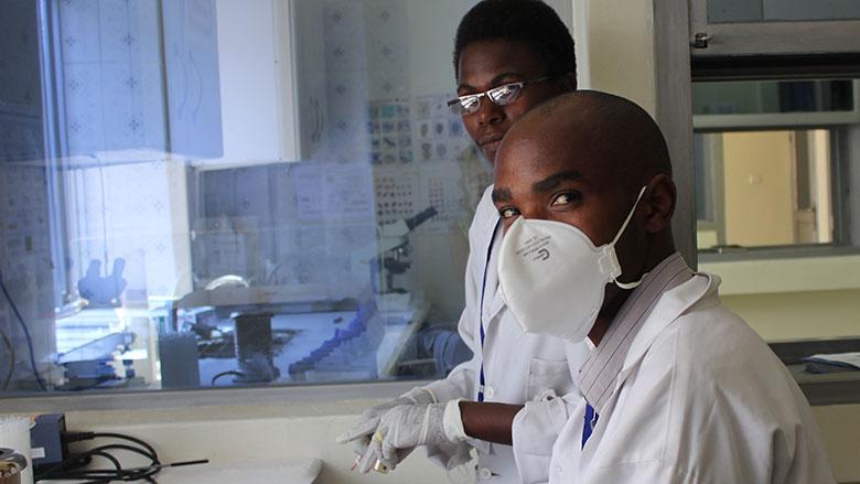 Face à la pandémie de coronavirus, les pays africains confrontent à une pandémie qui n'en finit plus